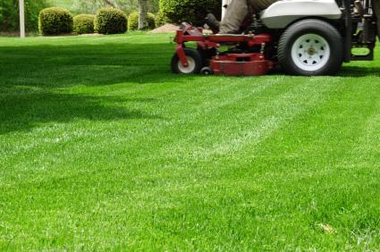 Everett Commercial landscape Maintenance